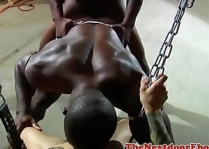 Athletic muscular stud getting cocksucked